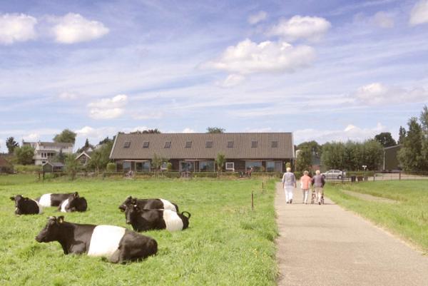 Boerderij ZH044 - Nederland - Zuid-Holland - 8 personen afbeelding