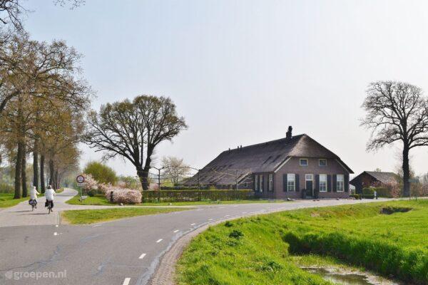 Vakantieboerderij Havelte - 26 personen - Nederland - Drenthe - Havelte