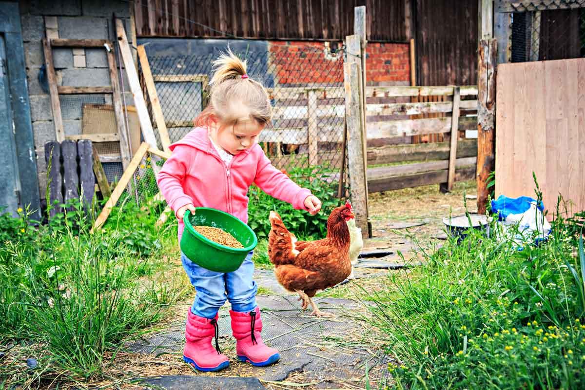 peuter op vakantieboerderij Overijssel